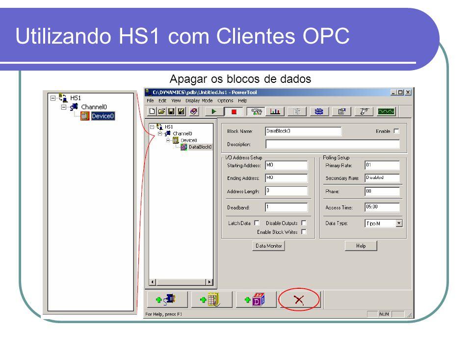Utilizando HS1 com Clientes OPC Apagar os blocos de dados