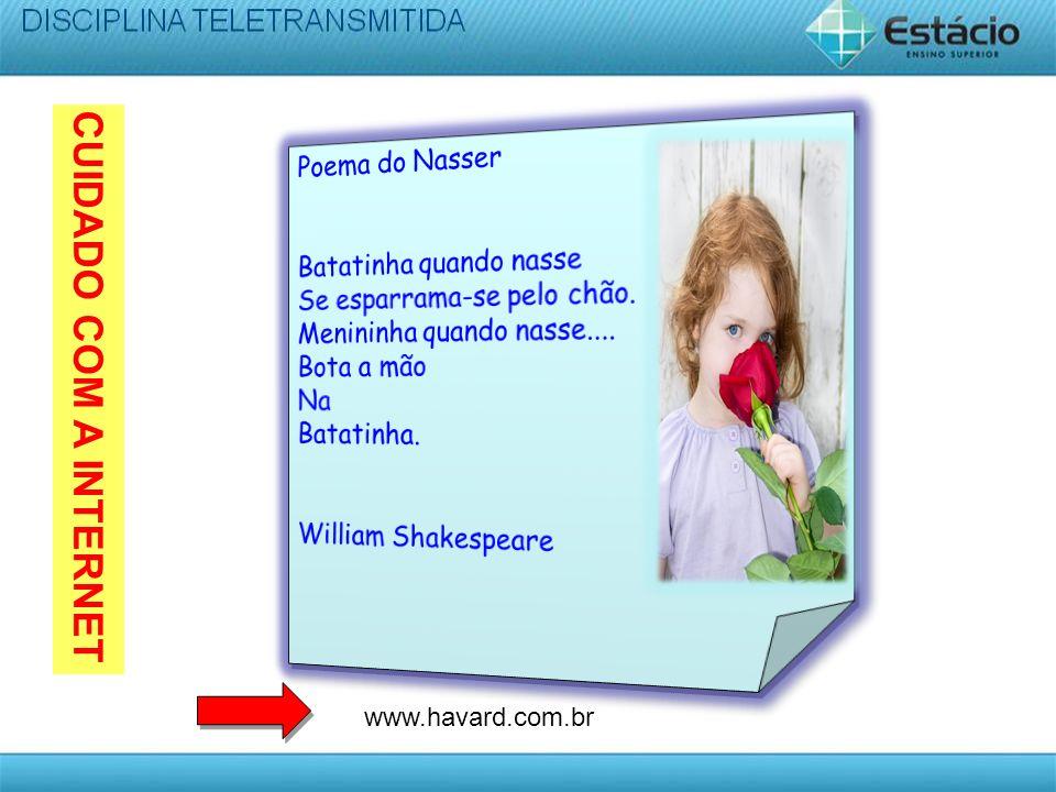 CUIDADO COM A INTERNET www.havard.com.br