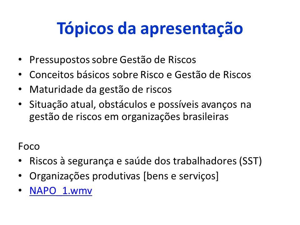Tópicos da apresentação Pressupostos sobre Gestão de Riscos Conceitos básicos sobre Risco e Gestão de Riscos Maturidade da gestão de riscos Situação a