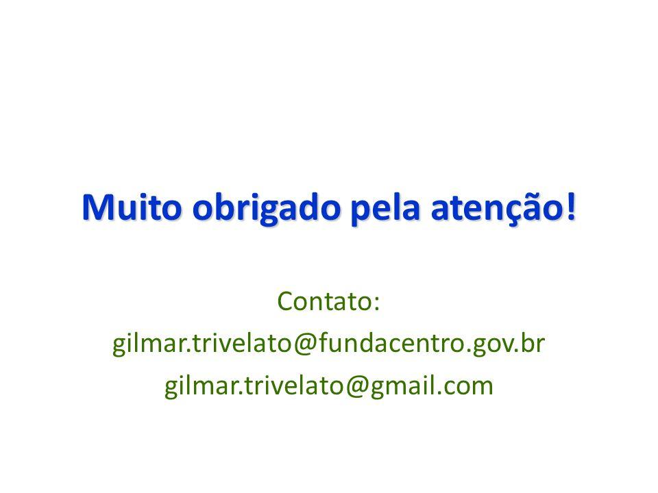 Muito obrigado pela atenção! Contato: gilmar.trivelato@fundacentro.gov.br gilmar.trivelato@gmail.com