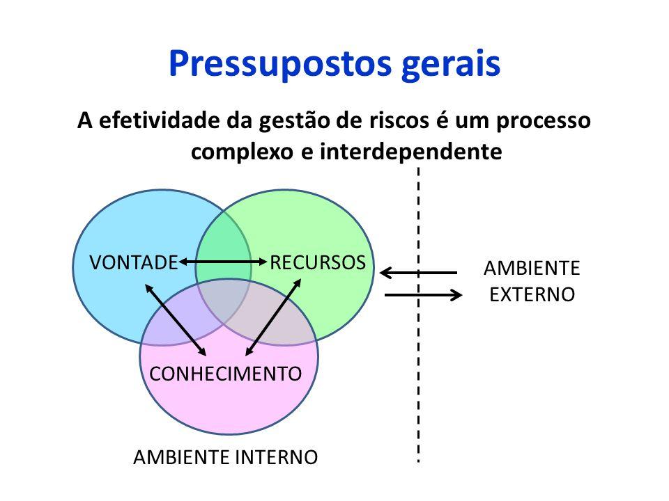 Pressupostos gerais A efetividade da gestão de riscos é um processo complexo e interdependente VONTADERECURSOS CONHECIMENTO AMBIENTE EXTERNO AMBIENTE