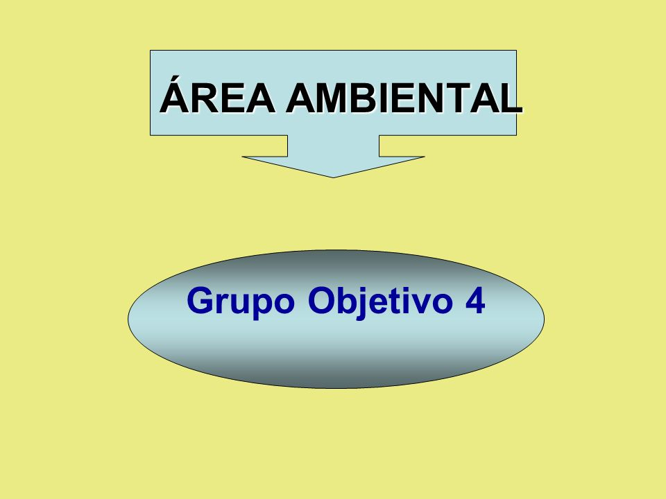 ÁREA AMBIENTAL Grupo Objetivo 4