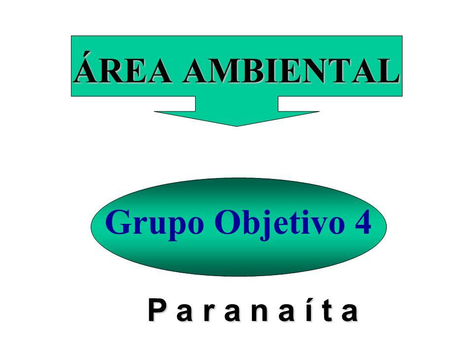ÁREA AMBIENTAL Grupo Objetivo 4 P a r a n a í t a