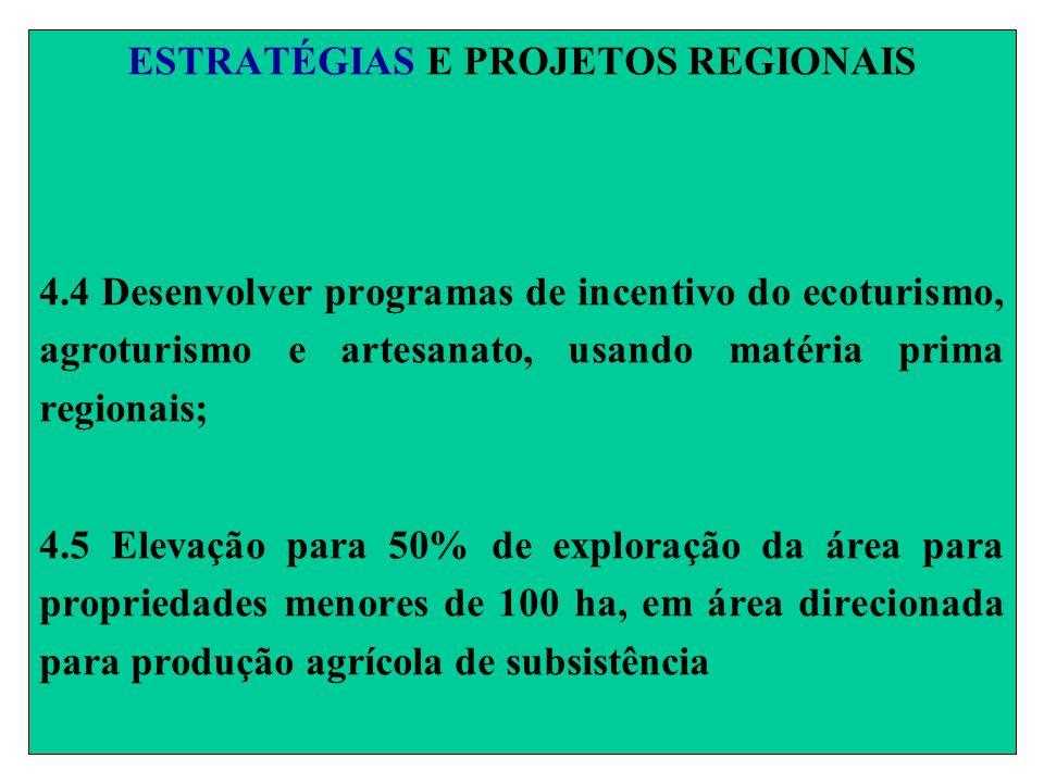 ESTRATÉGIAS E PROJETOS REGIONAIS 4.4 Desenvolver programas de incentivo do ecoturismo, agroturismo e artesanato, usando matéria prima regionais; 4.5 E