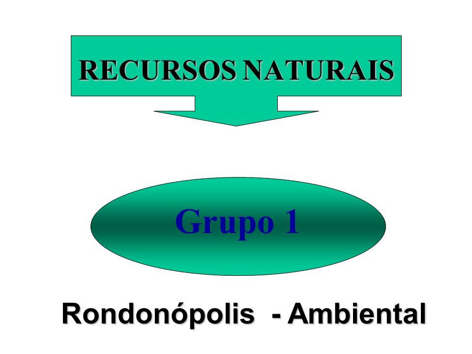 RECURSOS NATURAIS Grupo 1 Rondonópolis - Ambiental