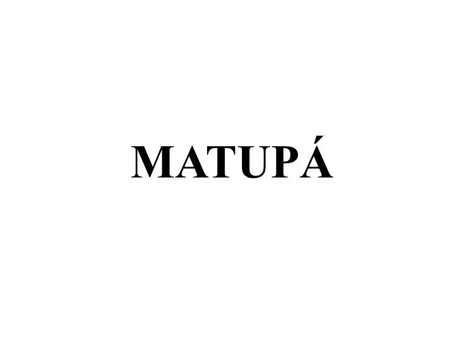 MATUPÁ