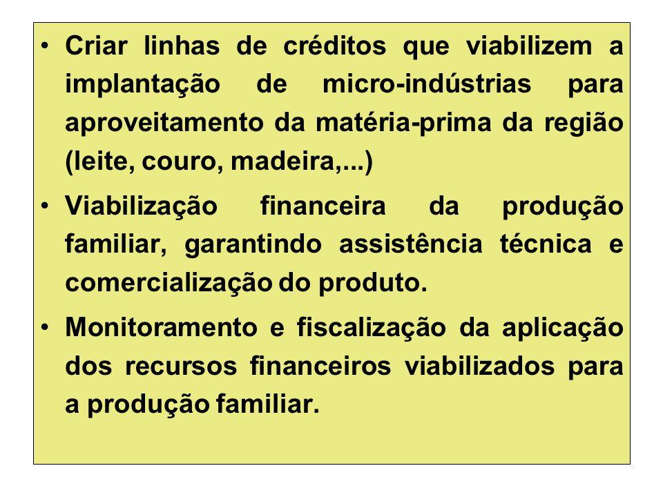Criar linhas de créditos que viabilizem a implantação de micro-indústrias para aproveitamento da matéria-prima da região (leite, couro, madeira,...) Viabilização financeira da produção familiar, garantindo assistência técnica e comercialização do produto.