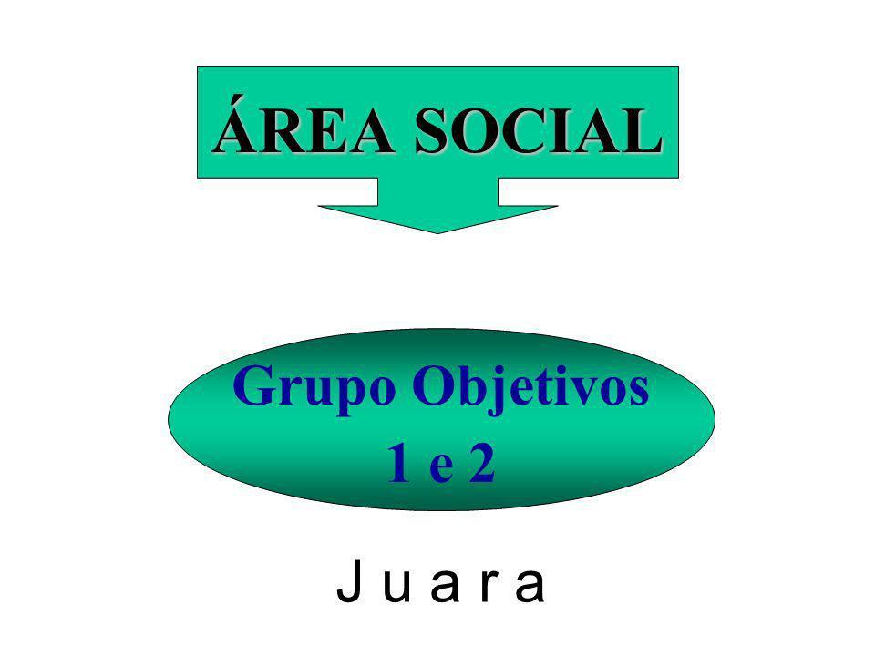 ÁREA SOCIAL Grupo Objetivos 1 e 2 J u a r a