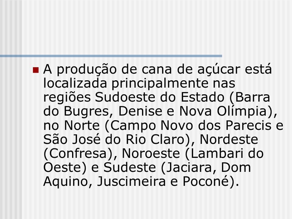 A produção de cana de açúcar está localizada principalmente nas regiões Sudoeste do Estado (Barra do Bugres, Denise e Nova Olímpia), no Norte (Campo N