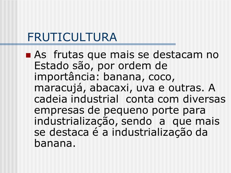 FRUTICULTURA As frutas que mais se destacam no Estado são, por ordem de importância: banana, coco, maracujá, abacaxi, uva e outras. A cadeia industria