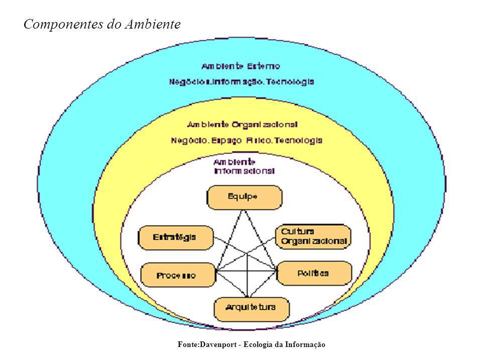 Fonte:Davenport - Ecologia da Informação Componentes do Ambiente