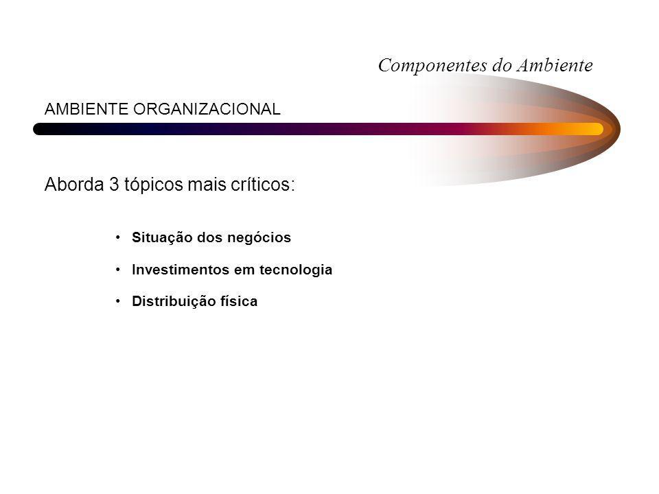 Componentes do Ambiente AMBIENTE ORGANIZACIONAL Aborda 3 tópicos mais críticos: Situação dos negócios Investimentos em tecnologia Distribuição física