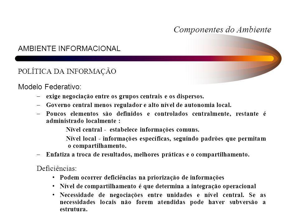 Componentes do Ambiente AMBIENTE INFORMACIONAL POLÍTICA DA INFORMAÇÃO Modelo Federativo: –exige negociação entre os grupos centrais e os dispersos. –G