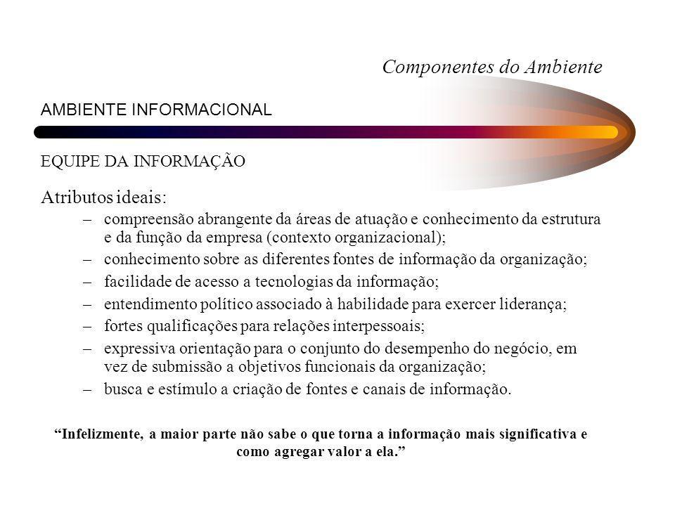 Componentes do Ambiente AMBIENTE INFORMACIONAL EQUIPE DA INFORMAÇÃO Atributos ideais: –compreensão abrangente da áreas de atuação e conhecimento da es