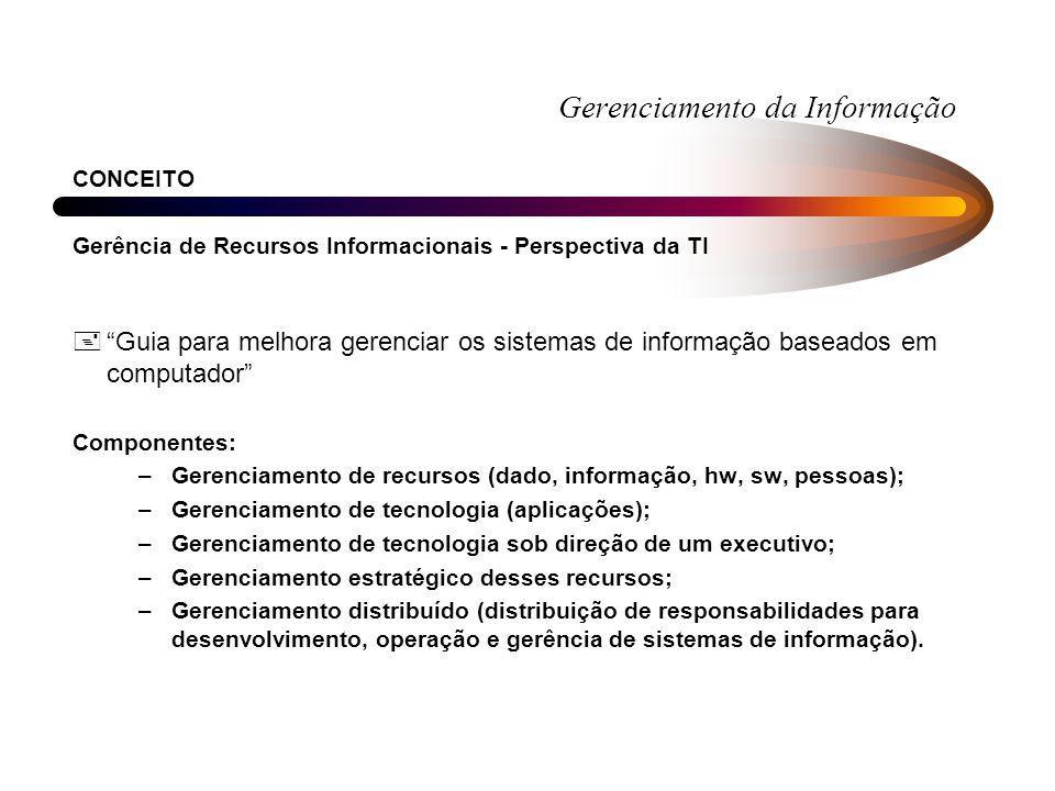 Gerenciamento da Informação CONCEITO Gerência de Recursos Informacionais - Perspectiva da TI +Guia para melhora gerenciar os sistemas de informação ba