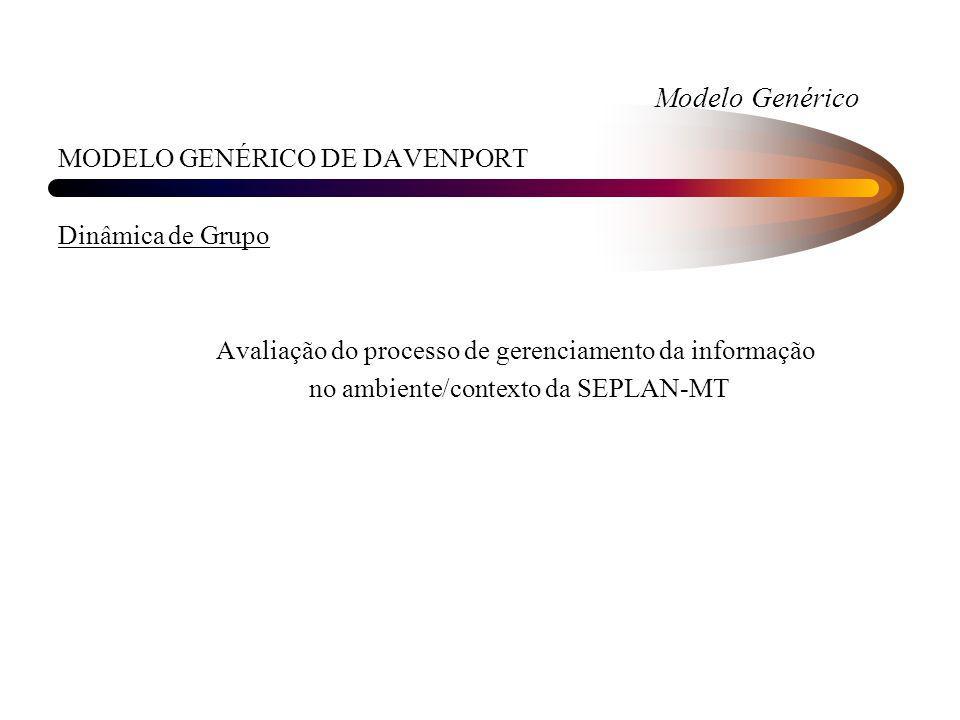 Modelo Genérico MODELO GENÉRICO DE DAVENPORT Dinâmica de Grupo Avaliação do processo de gerenciamento da informação no ambiente/contexto da SEPLAN-MT