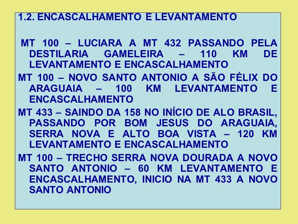 1.2. ENCASCALHAMENTO E LEVANTAMENTO MT 100 – LUCIARA A MT 432 PASSANDO PELA DESTILARIA GAMELEIRA – 110 KM DE LEVANTAMENTO E ENCASCALHAMENTO MT 100 – N