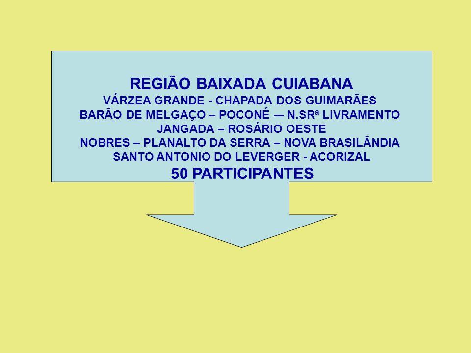 10.8.Criar Programa Estadual de Apoio ao Desenvolvimento Urbano; 10.9.