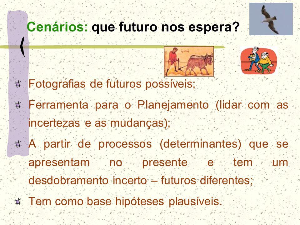 Fotografias de futuros possíveis; Ferramenta para o Planejamento (lidar com as incertezas e as mudanças); A partir de processos (determinantes) que se