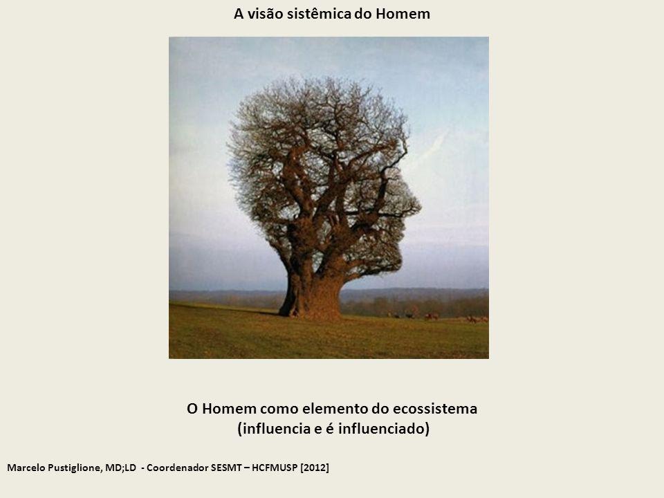 Marcelo Pustiglione, MD;LD - Coordenador SESMT – HCFMUSP [2012] O Homem como elemento do ecossistema (influencia e é influenciado) A visão sistêmica d
