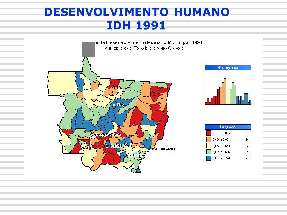 DESENVOLVIMENTO HUMANO IDH 1991