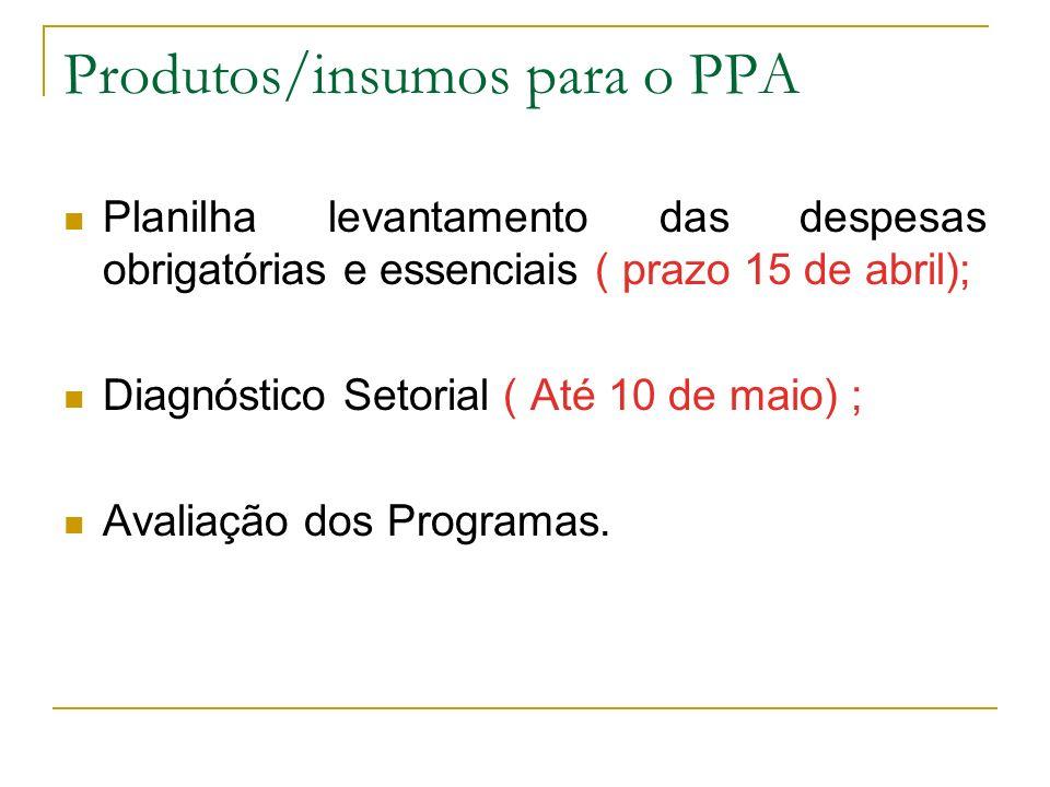 Produtos/insumos para o PPA Planilha levantamento das despesas obrigatórias e essenciais ( prazo 15 de abril); Diagnóstico Setorial ( Até 10 de maio)