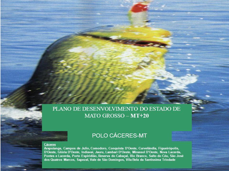 PLANO DE DESENVOLVIMENTO DO ESTADO DE MATO GROSSO – MT+20 POLO CÁCERES-MT Cáceres Araputanga, Campos de Julio, Comodoro, Conquista DOeste, Curvelândia
