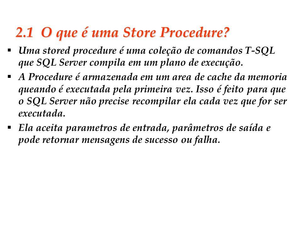 Slide 13 2.1 O que é uma Store Procedure? Uma stored procedure é uma coleção de comandos T-SQL que SQL Server compila em um plano de execução. A Proce