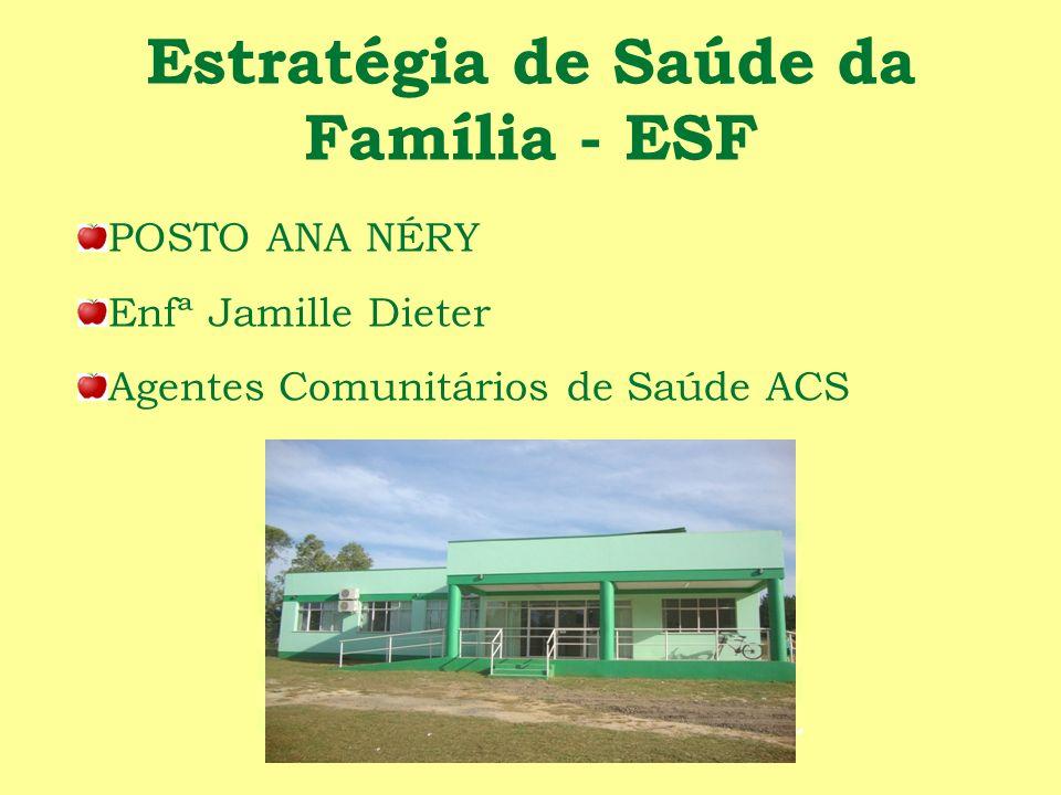 Estratégia de Saúde da Família - ESF POSTO ANA NÉRY Enfª Jamille Dieter Agentes Comunitários de Saúde ACS
