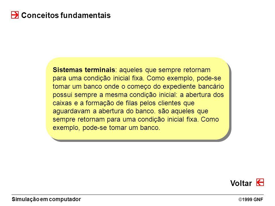 Simulação em computador ©1999 GNF Conceitos fundamentais Sistemas terminais: aqueles que sempre retornam para uma condição inicial fixa. Como exemplo,