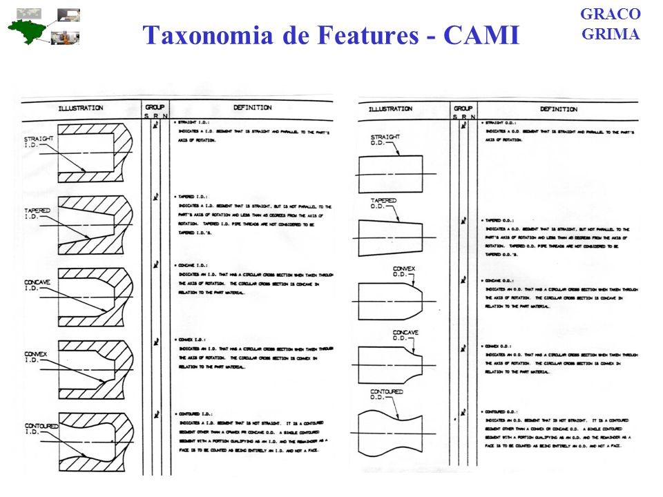 Taxonomia de Features - CAMI GRACO GRIMA