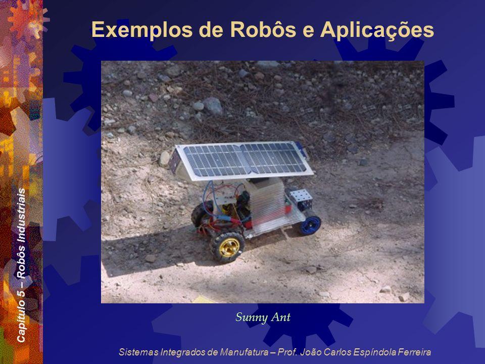 Capítulo 5 – Robôs Industriais Sistemas Integrados de Manufatura – Prof. João Carlos Espíndola Ferreira Exemplos de Robôs e Aplicações Sunny Ant