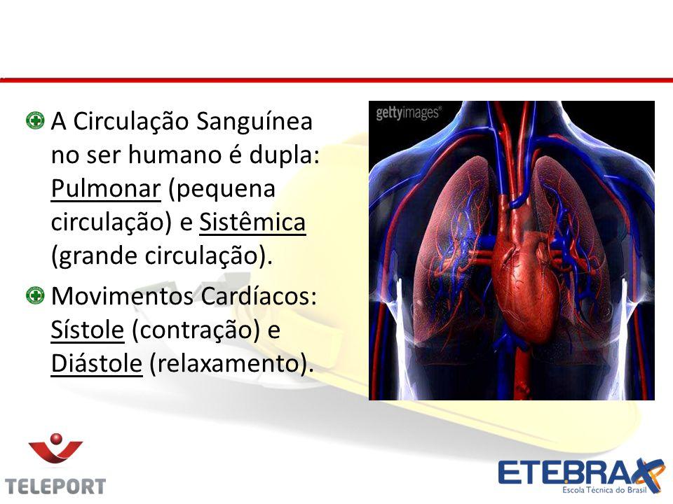 Sistema Cardiovascular A Circulação Sanguínea no ser humano é dupla: Pulmonar (pequena circulação) e Sistêmica (grande circulação).
