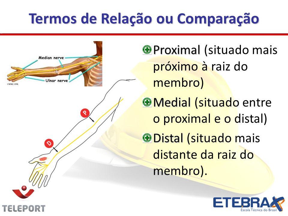 Termos de Relação ou Comparação Proximal Proximal (situado mais próximo à raiz do membro) Medial Medial (situado entre o proximal e o distal) Distal Distal (situado mais distante da raiz do membro).