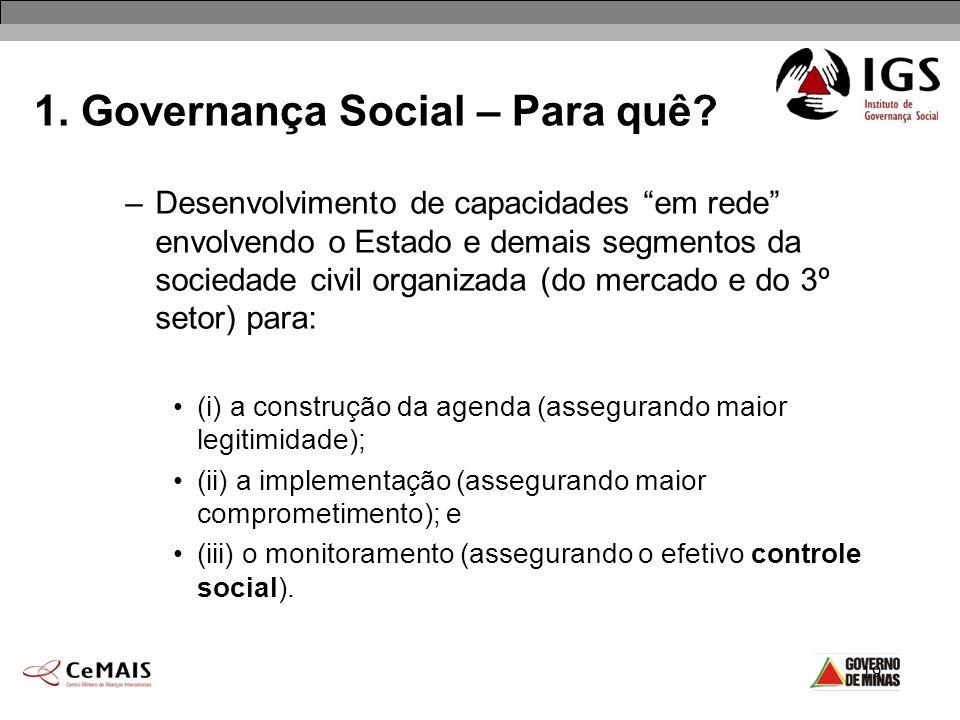 19 –Desenvolvimento de capacidades em rede envolvendo o Estado e demais segmentos da sociedade civil organizada (do mercado e do 3º setor) para: (i) a