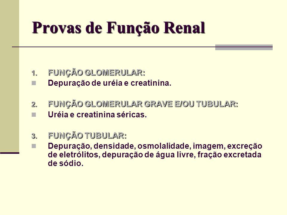 Pielograma Intravenoso Técnica radiológica capaz de delinear as vias urinárias superiores e inferiores.