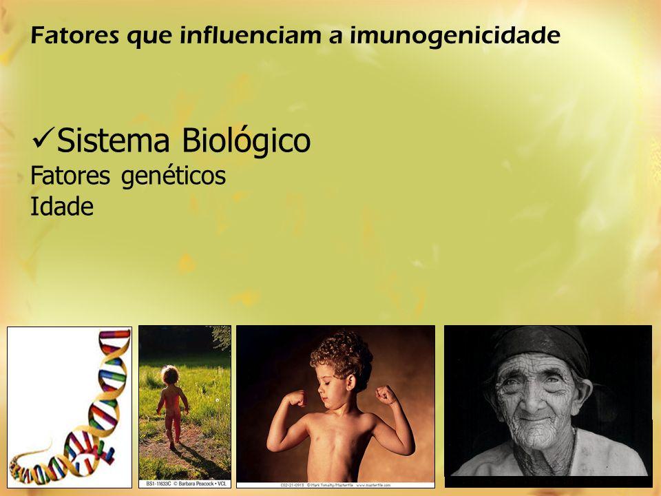 Sistema Biológico Fatores genéticos Idade Livro Terra, Companhia das Letras, 1997 - Editora Schwarcz Fatores que influenciam a imunogenicidade