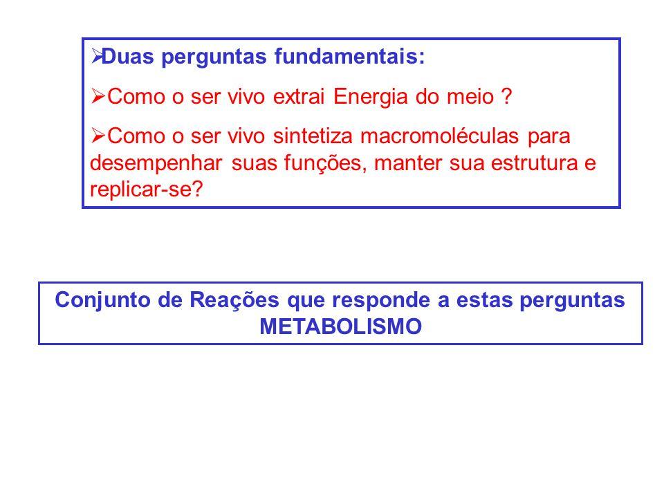 Duas perguntas fundamentais: Como o ser vivo extrai Energia do meio ? Como o ser vivo sintetiza macromoléculas para desempenhar suas funções, manter s