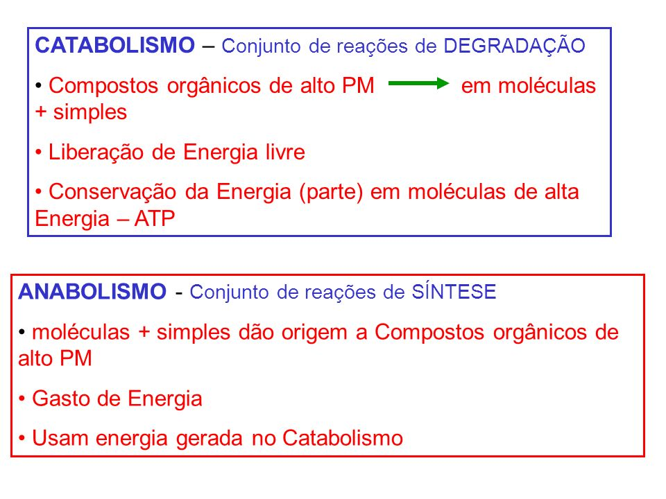 ANABOLISMO - Conjunto de reações de SÍNTESE moléculas + simples dão origem a Compostos orgânicos de alto PM Gasto de Energia Usam energia gerada no Ca