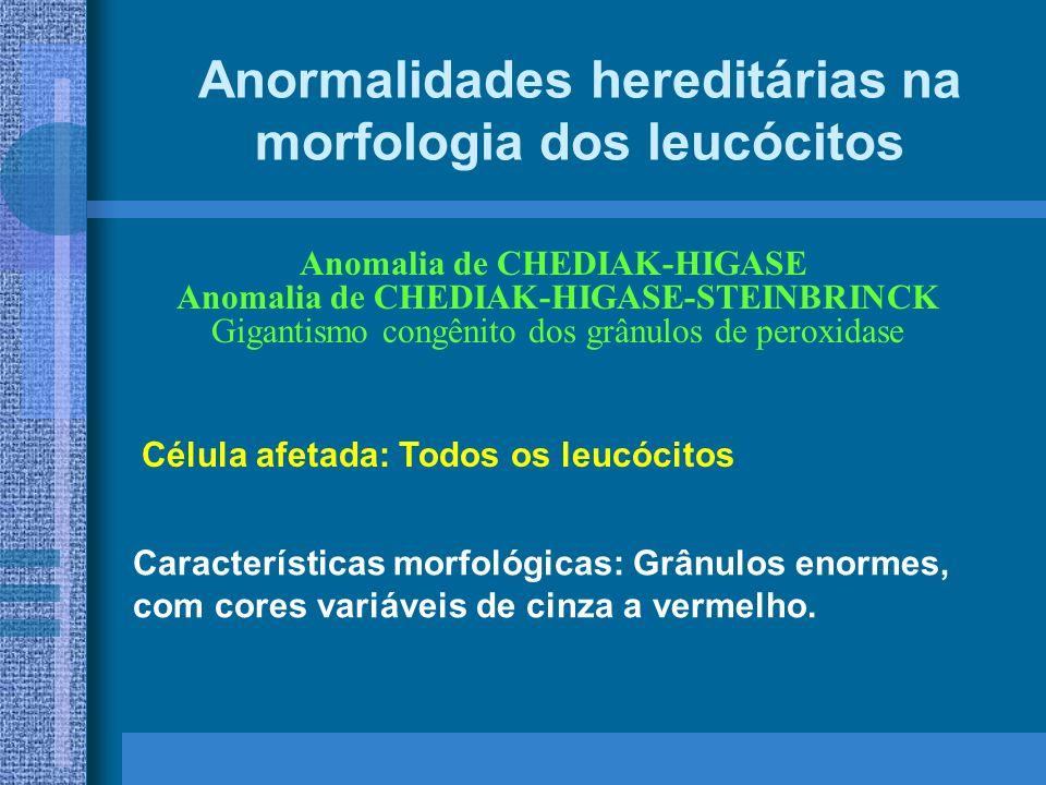 Anormalidades hereditárias na morfologia dos leucócitos Anomalia de CHEDIAK-HIGASE Anomalia de CHEDIAK-HIGASE-STEINBRINCK Gigantismo congênito dos grânulos de peroxidase Características morfológicas: Grânulos enormes, com cores variáveis de cinza a vermelho.