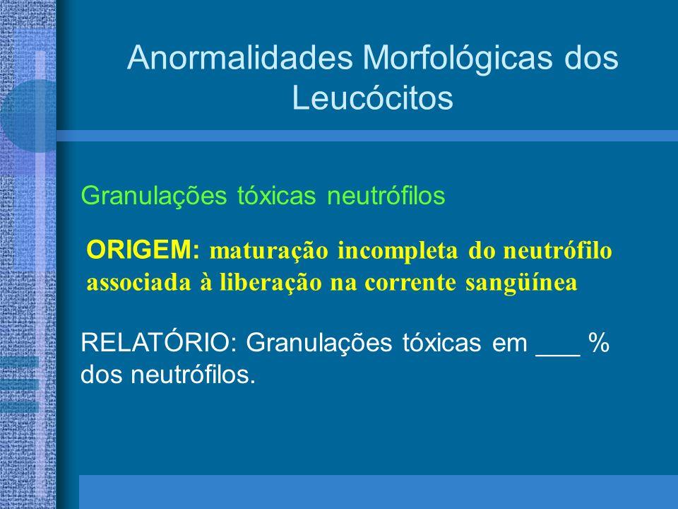 RELATÓRIO: Granulações tóxicas em ___ % dos neutrófilos.