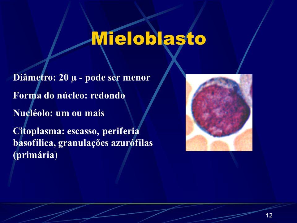 11 Maturação dos Neutrófilos UFC-GRANULÓCITO-MONÓCITO Mieloblasto Promielócito Mielócito Metamielócito Bastonete Segmentado