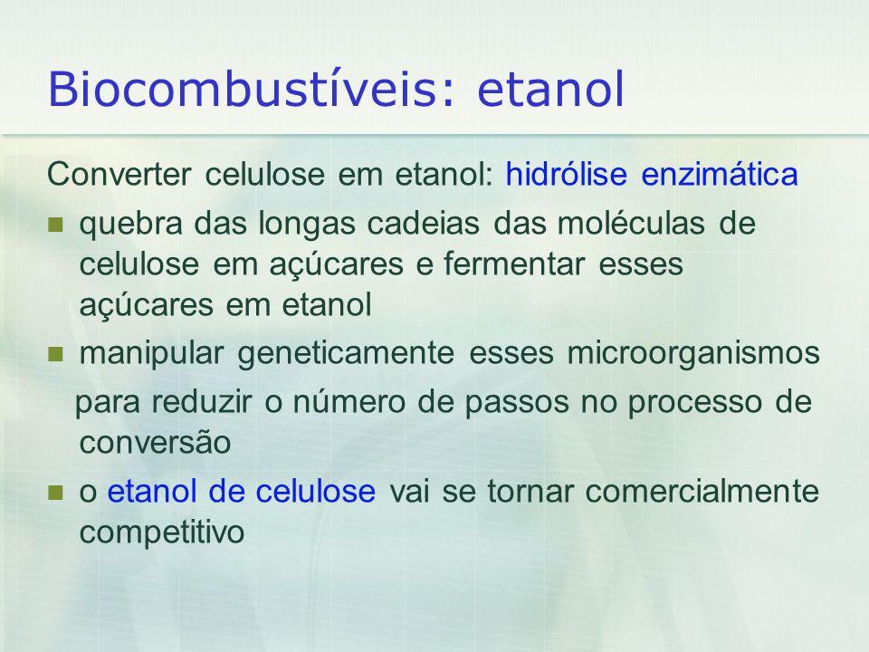 Biocombustíveis: etanol Converter celulose em etanol: hidrólise enzimática quebra das longas cadeias das moléculas de celulose em açúcares e fermentar