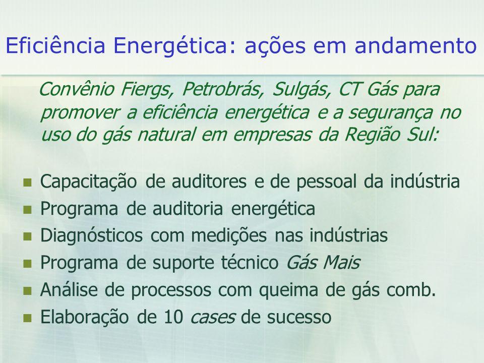 Eficiência Energética: ações em andamento Convênio Fiergs, Petrobrás, Sulgás, CT Gás para promover a eficiência energética e a segurança no uso do gás