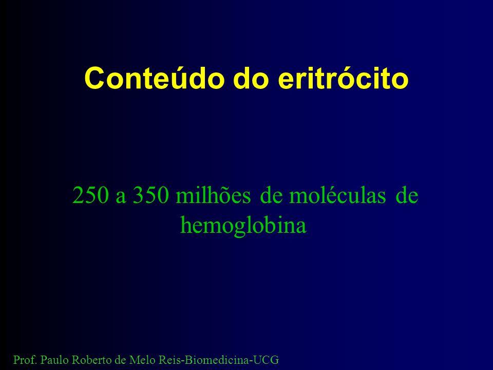 Conteúdo do eritrócito 250 a 350 milhões de moléculas de hemoglobina Prof.
