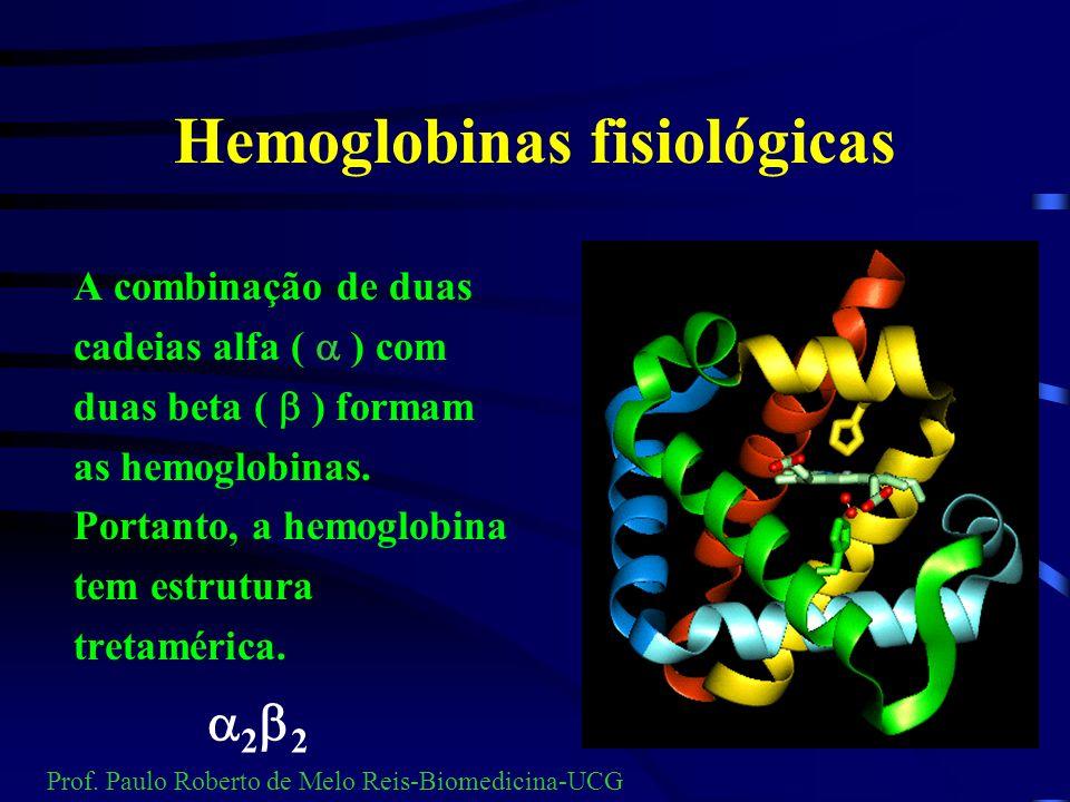 Genética da hemoglobina Cadeia beta Cadeia alfa 141 aa 146 aa Prof. Paulo Roberto de Melo Reis-Biomedicina-UCG