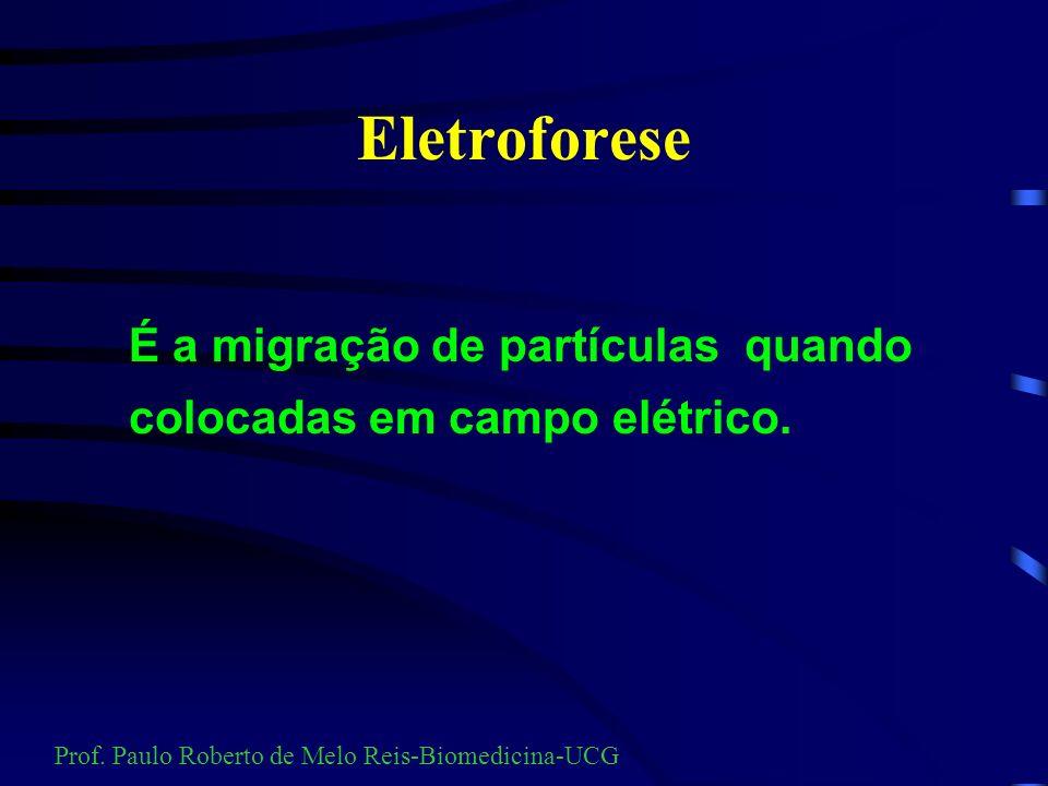 Eletroforese Eletro = Eletricidade Forese = Separação Prof. Paulo Roberto de Melo Reis-Biomedicina-UCG