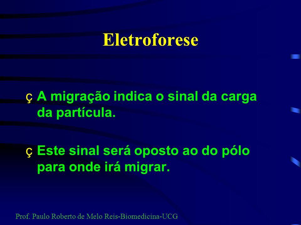 Eletroforese É a migração de partículas quando colocadas em campo elétrico. Prof. Paulo Roberto de Melo Reis-Biomedicina-UCG