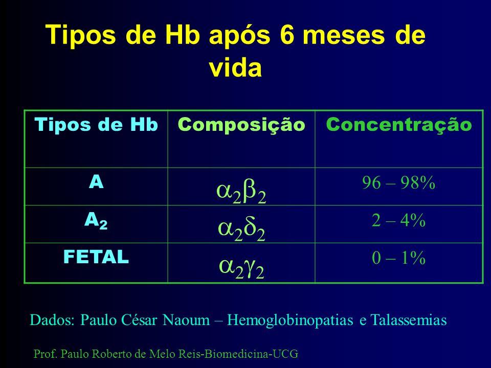 Hemoglobinas fisiológicas A combinação de duas cadeias alfa ( ) com duas beta ( ) formam as hemoglobinas. Portanto, a hemoglobina tem estrutura tretam