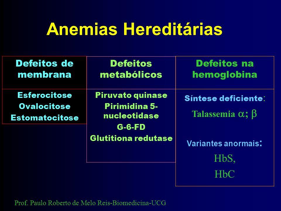 Anemias Hereditárias Defeitos de membrana Esferocitose Ovalocitose Estomatocitose Defeitos metabólicos Piruvato quinase Pirimidina 5- nucleotidase G-6-FD Glutitiona redutase Defeitos na hemoglobina Síntese deficiente : Talassemia ; Variantes anormais : HbS, HbC Prof.